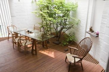 胡志明市A21工作室 城市中的热带雨林